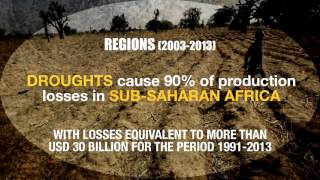 Download The impact of disasters on agriculture and food security Video