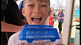 Download He got a goldfish! Vlog Ep 1 Video