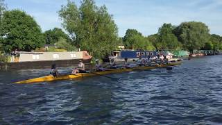 Download May Bumps 2017 Video