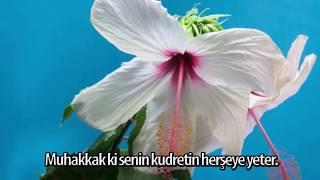 Download Cuma Mesajları ✅ Ey belaları defeden Allahım ✅ Hayırlı cumalar ✅ Friday Messages Video