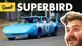 Download Superbird+Daytona - Everything You Need to Know | Up to Speed Video