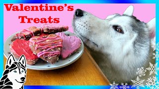 Download VALENTINE'S DOG TREATS DIY | Marble Hearts 💘 | Snow Dogs Snacks 65 | DIY Dog Treats Video