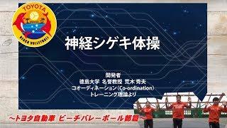 Download 神経シゲキ体操 ビーチバレーボール部篇 Video
