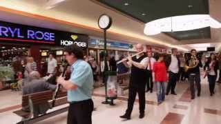 Download Flashmob symphonique - Centre commercial Auchan Noyelles Video