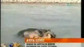 Download köylüler ayıyı dövüyor Video