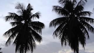 Download Port Salut Haiti Video