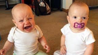 Download Adorables bebés gemelos Video