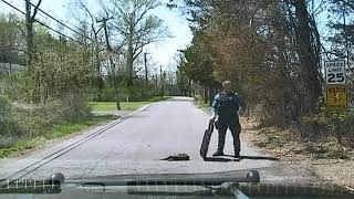 Download N.J. police officer uses tactical shield to help snapping turtle cross road Video