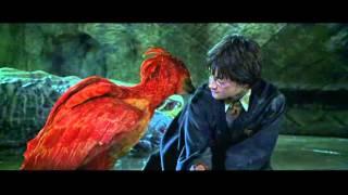 Download phoenix tears Video