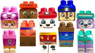 Download Best Learning Colors for Children Paw Patrol Wrong Heads Ionix Blocks Zuma Everest | Fizzy Fun Toys Video