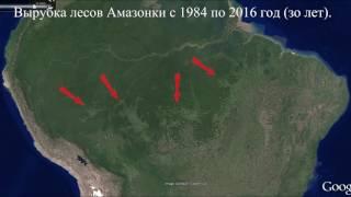 Download Вырубка лесов Амазонки за 30 лет. Video