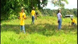 Download Proyecto de Reforestación ″Sembrando hacia el futuro″ Ruta 1856 Video