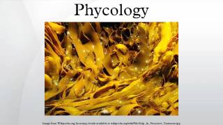 Download Phycology Video