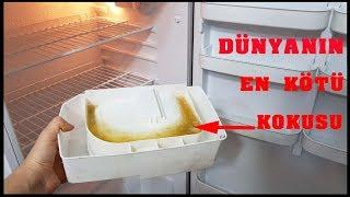 Download Evinizdeki Pis Kokunun Sebebini Öğrenince Çok Şaşıracaksınız - Buzdolabı kokusu giderme Video