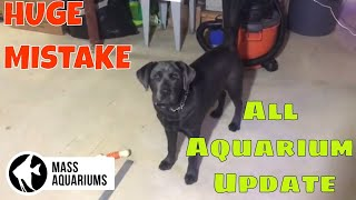 Download All My Aquariums: Plus HUGE Fish Keeper's Screw Up Video