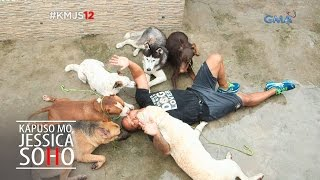 Download Kapuso Mo, Jessica Soho: The Pack Leader Video