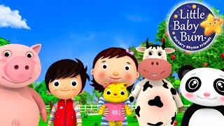 Download Nursery Rhyme Videos | Compilation from LittleBabyBum! | New Live Stream! Video