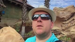Download Magic Kingdom - Christmas, parades, and rides Video