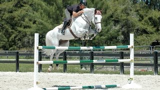 Download Horse Jumps ProTips - Ride-A-Course with Todd Minikus Video