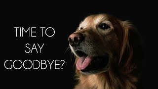 Download Saying Goodbye: The Right Time to Euthanize Your Pet Video