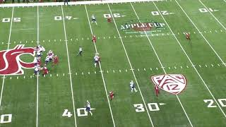 Download Most Underrated CB in the PAC-12 || Washington State CB Marcellus Pippins Career Highlights Video