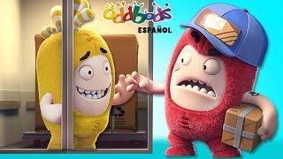 Download Repartidor de Paquetería - Oddbods | Caricaturas Graciosas para Niños Video