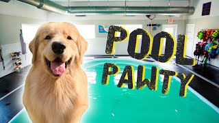 Download Throwing My Dog a Pool Party Video