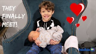 Download BIG BROTHER FINALLY MEETS BABY SISTER! Video