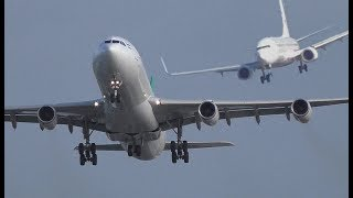 "Download Storm ""Herwart"" at DUS Airport, two go arounds crosswind landings A380, A340, A330, Sturm ″Herwart″ Video"