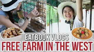 Download FREE-ENTRY FARM IN THE WEST - FARMART CENTRE l Eatbook Vlogs l EP 32 Video