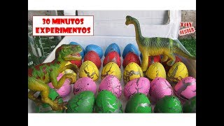 Download 30 Minutos Nuevos Experimentos Caseros con huevos de dinosaurios para niños Video