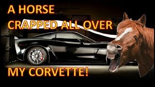Download I've got horse manure all over my Corvette! Video