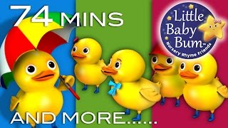 Download Five Little Ducks | Little Baby Bum | Nursery Rhymes for Babies | Videos for Kids Video