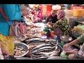 Download Samki Market at Kampot Province Video