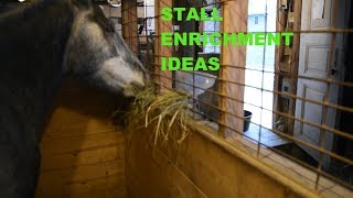 Download Stall Enrichment Ideas Video