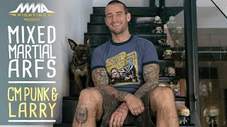 Download Mixed Martial Arfs: CM Punk and Larry Video
