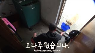 Download ″아저씨! 말하지 마세요 알아서 해드릴개^^″ㅣ″I know what to do because I'm a smart dog^^″ Video
