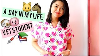 Download A DAY IN THE LIFE OF A VET STUDENT ❤ Video