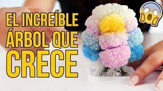 Download EL INCREÍBLE ÁRBOL MÁGICO QUE CRECE | Juguetes para niños Video