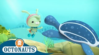 Download Octonauts - Deep Water Trouble | Cartoons for Kids | Underwater Sea Education Video