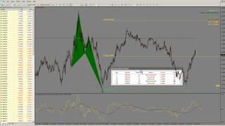 Download FSO Harmonic Scanner6 Setup Tutorial Video