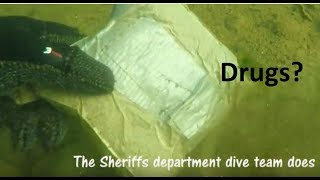 Download Scuba diving for treasure and Fun near Nimbus Dam on the American River Video