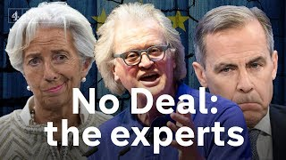 Download Forget politicians - here's the experts' view of a No-Deal Brexit Video