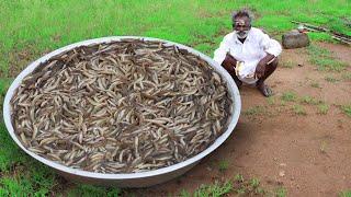 Download Rare River Fish Kulambu Prepared by my daddy / Ayirameen Kulambu / Village food factory Video