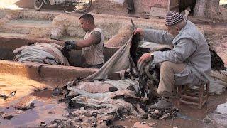 Download Tanneries, Marrakech – Quick Tour Video