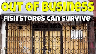 Download How Aquarium Co-Op is Thriving while Many Fish Stores are Dying! Video
