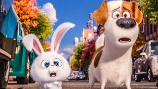 Download THE SECRET LIFE OF PETS Trailer, Movie Clips, Viral Videos & TV Spots (2016) Video