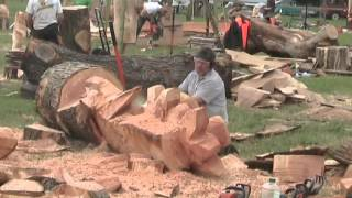 Download Barbara & Alan record Chainsaw Wood Sculptures at Woodfest Wales Video