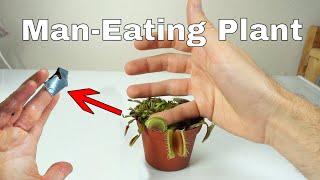 Download I Let a Venus Flytrap Digest My Finger For a Day–Little Shop of Horrors Challenge! Video