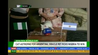 Download TVC News Nigeria Live Video